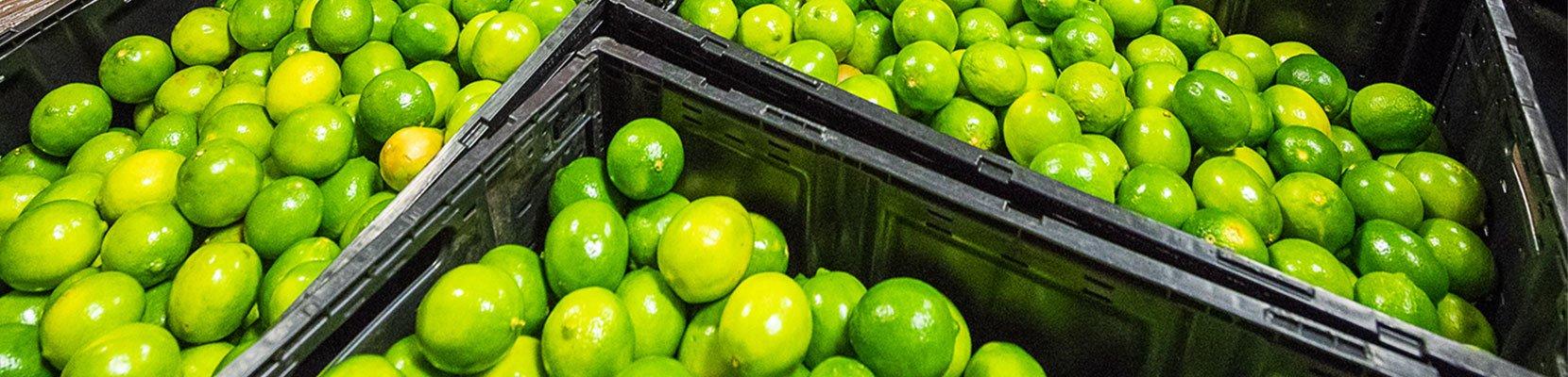 produce-rescue